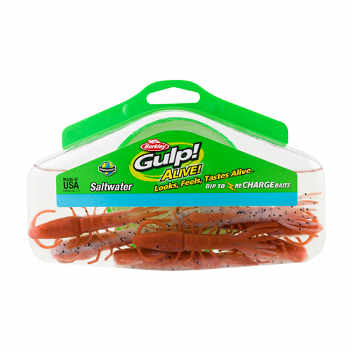 Berkley Gulp Alive Hollow Shrimp Half Pint Bucket Package