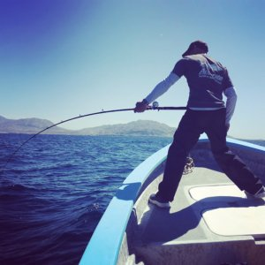 Slower less forgiving rod that puts the heat on the angler versus the fish
